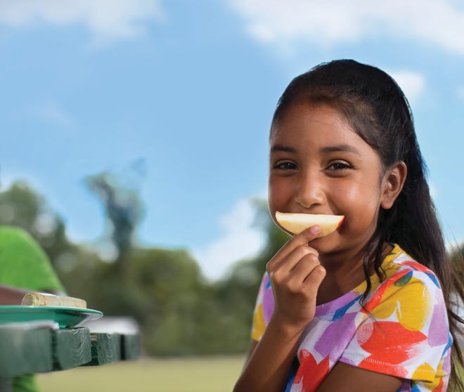 The Milford Area Humanitarian Coalition and the Hockomock Area YMCA are partnering to operate an official USDA/MA Department of Education summer meal program in the community of Milford known as the Milford Summer Lunch Program.