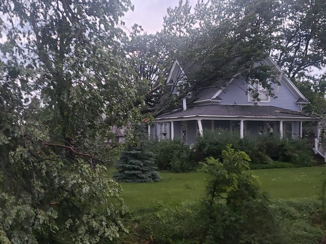 Trees fell on top of this house in Riga.