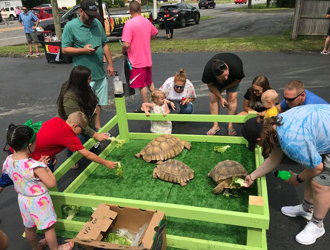A crowd gathers to help feed tortoises Torty, Dotty and Betty June 19 during the grand opening of Upscale Exotics in Sherrill.