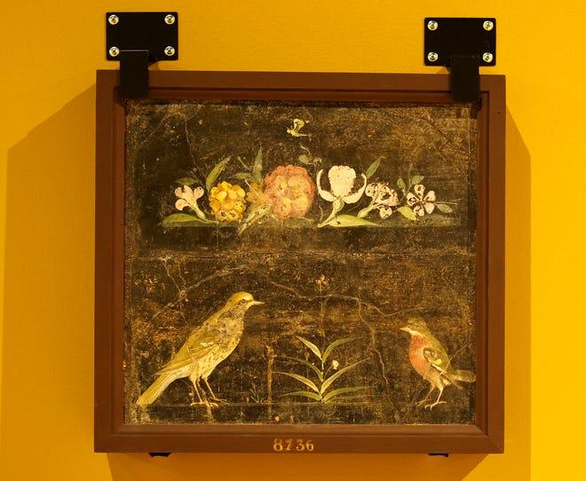 """""""Νεκρή φύση με πουλιά και λουλούδια, Herculaneum"""" Εμφανίζεται """"Ζωγράφοι της Πομπηίας"""" Έκθεση στο Μουσείο Τέχνης της Οκλαχόμα Σίτι."""