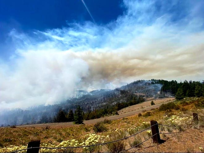 Smoke from the Warm Springs S-503 Fire is impacting air quality in some parts of the state.