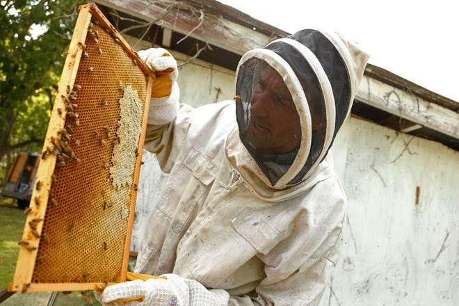 Dave Kirslis of Cicada Rhythm checks on one of his hives at his apiary at his home in Jackson County, Ga., on Thursday, June 10, 2021. Kirslis maintains an apiary and produces honey each year.