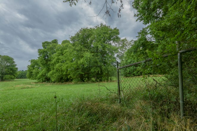 A 16-acre parcel of land is planned to contain a new park for Maury County Parks and Recreation along Mooresville Pike in Culleoka, Tenn., on Monday, June 21, 2021.
