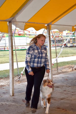 Adeline Dean puts her dog through its paces in the senior showmanship class at the 4-H dog contest on Monday, June 21, at the Henry County fairgrounds in Cambridge.