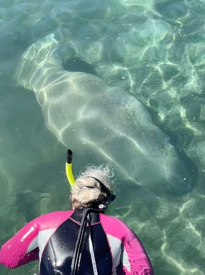 Kathy Ford of Gadsden got to swim with manatees in the Crystal River in Florida.