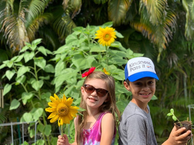 Celebrating pollinators: Piper Hynes and Ethan Chhabra with sunflowers big and small that will help sustain the creatures that sustain the planet.