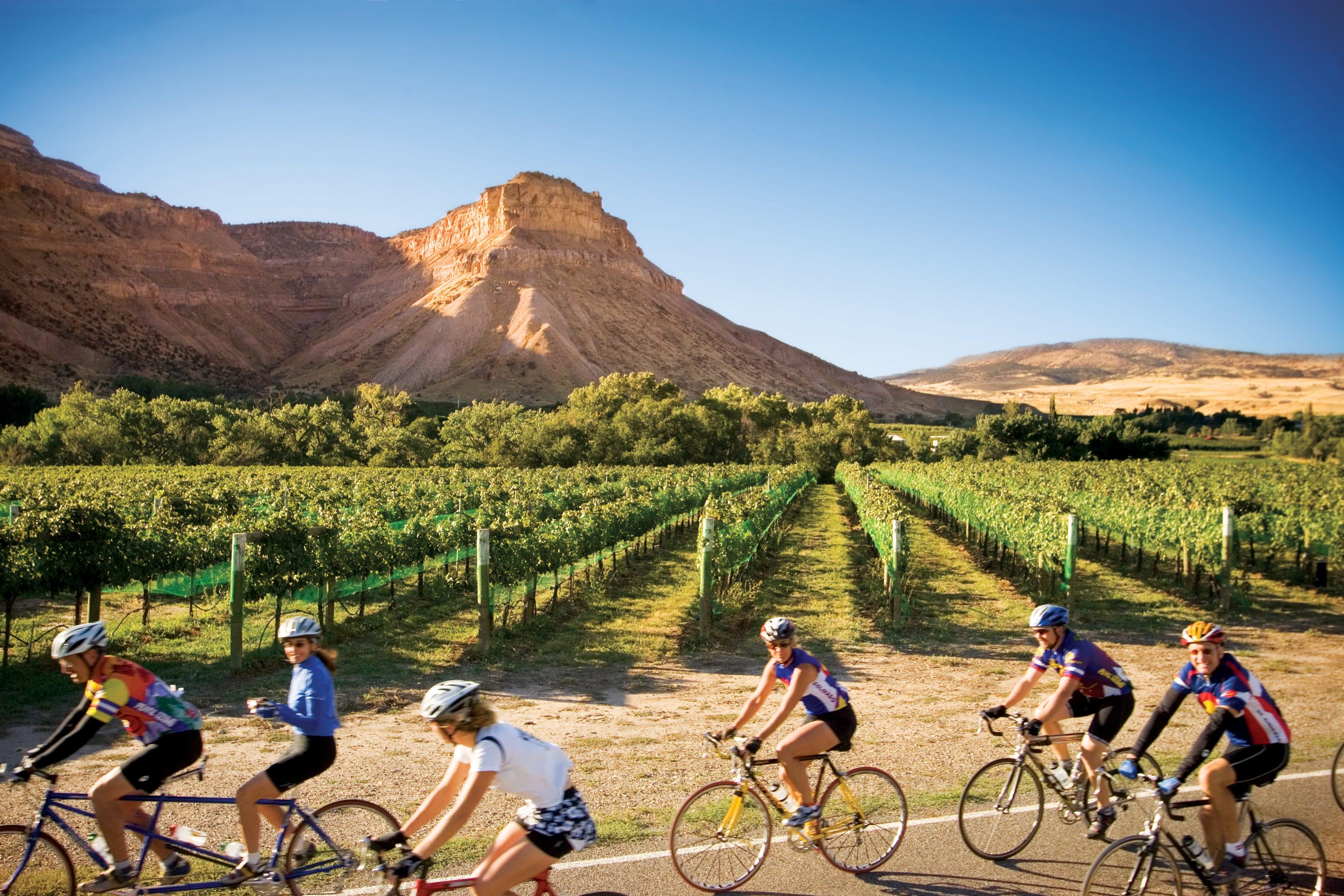 Beyond Sonoma: Check out wine country in Oregon, Colorado, Virginia and Pennsylvania