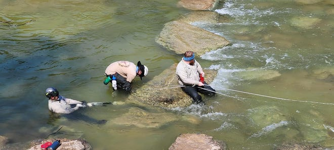Heavy rains at Dinosaur Valley State Park caused the Paluxy River to flood and it washed some of the stepping stones to the main dinosaur track sites downstream. The DVSP team stepped up recently and spent time in the water placing the stones back where they needed to be.