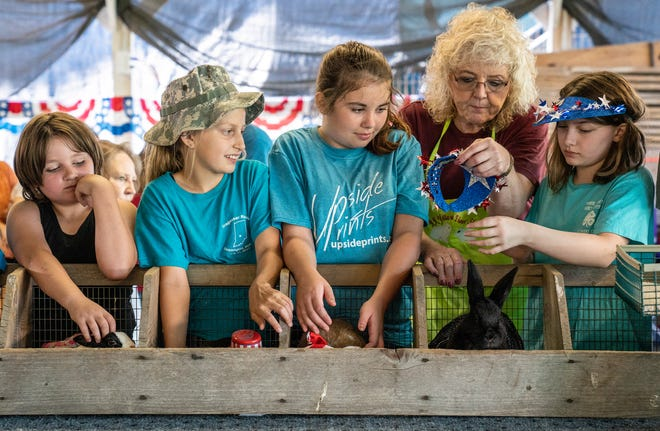 Participants make last-minute adjustments before the start of the dressed-up rabbit competition during check-in day at the Monroe County Fair at the Monroe County Fairgrounds on June 29, 2019. This year's Monroe County Fair begins Monday.