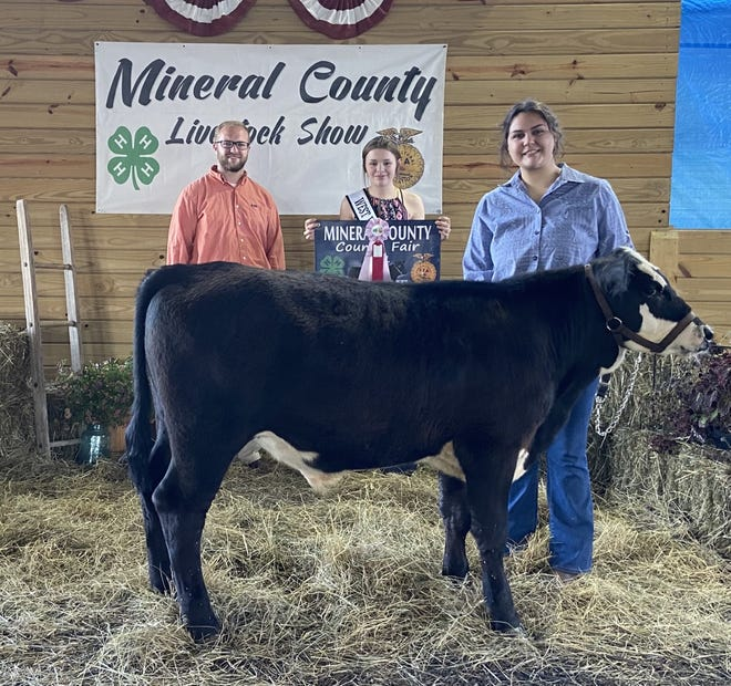 The Reserve Champion Feeder Steer was shown Tuesday at the Mineral County Fair by Mikhaela Barnes.