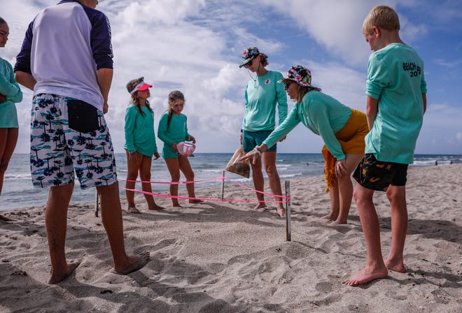 Kamp Kook instructor Taylor Jantz, center right, gestures to a sea turtle nest Tuesday on Midtown Beach while teaching campers about sea turtles during the first week of summer camp. Standing to Jantz's left is Kamp Kook co-founder Sarah Andrews.