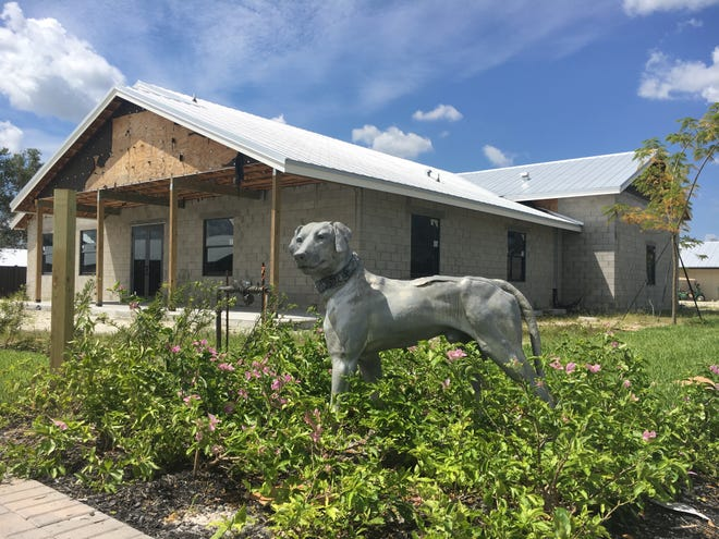 Big Dog Ranch Rescue said Wednesday that close to 50 dogs at its Loxahatchee Groves campus have tested positive for canine influenza, a contagious respiratory disease.