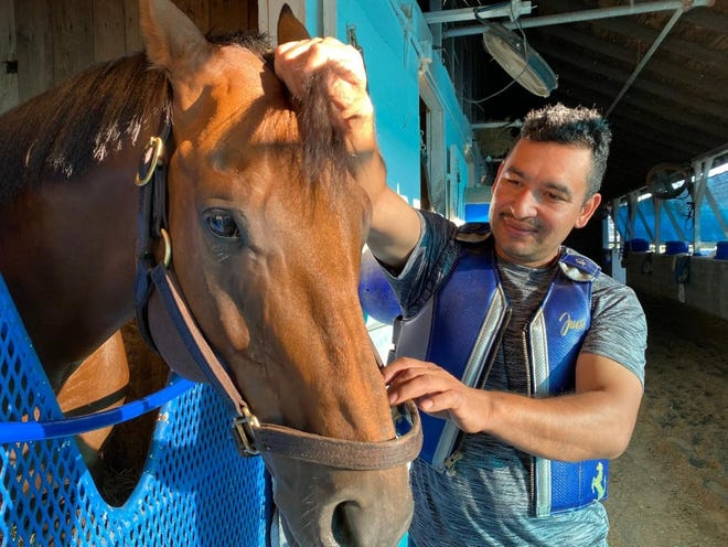 Trainer Juan Cano shows off his long shot Churchill Downs allowance winners Super Sol at his barn at the Louisville track. Cano is a hands-on trainer like his mentor Angel Montano.