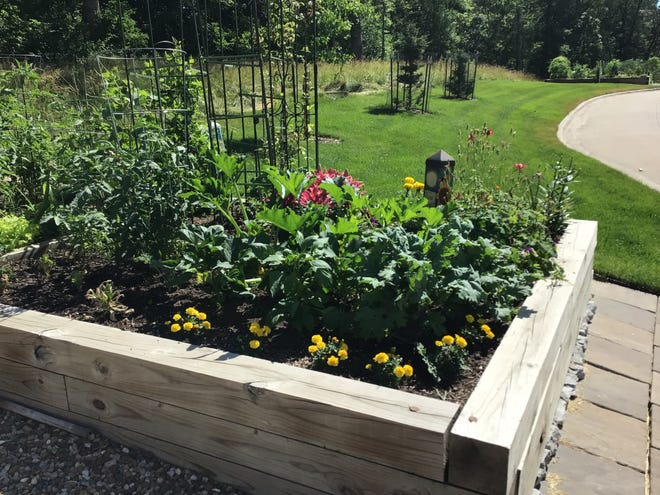 A raised bed at the Vintage Co-op of Coralville neatly tended by its owner.