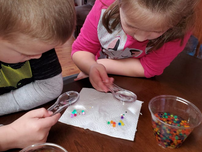 Two young campers watch as hydro-gel balls absorb water for an Inspired by Science project during their winter 2020 camp.
