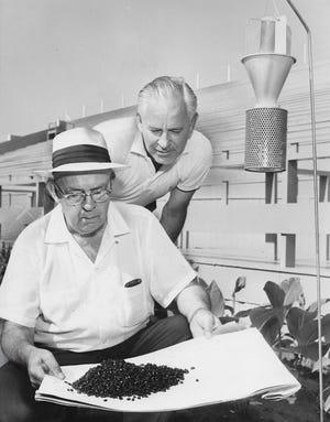 Akron Parks監Richard Barnhardtは1960年7月Derby DownsトラックマネージャーJohn Nyboerとともに日本カブトムシトラップをクリアします。