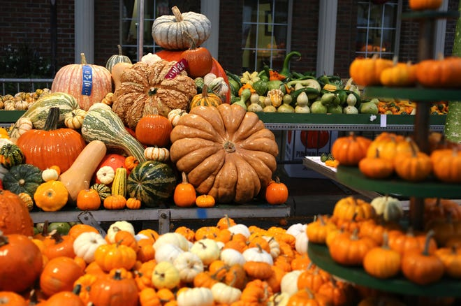 A mound of award-winning pumpkins sit on a table for display at the 107th annual Circleville Pumpkin Show in 2013. The coronavirus canceled the show in 2020, but organizers have announced it is back for this October.