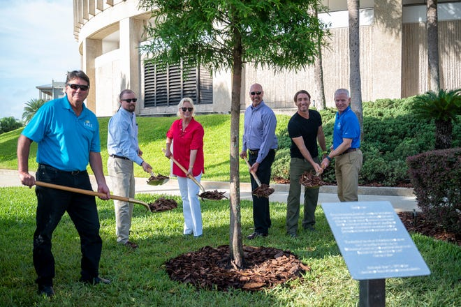 Lake County Commissioners hold a ceremonial mulching at the Liberty Tree ceremony in Tavares on Thursday. [Cindy Peterson/Correspondent]