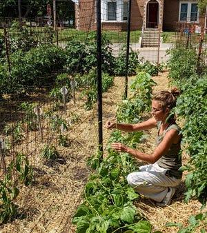 Victory Garden Coordinator Sydney DeWees