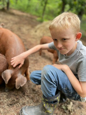 AK Wells, 9, loves helping with the livestock at his family's Humble Hive Homestead.