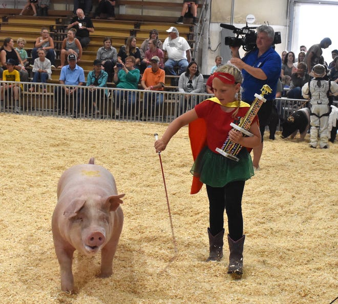 Bat Hog and Robin (Gwenevere Grimes of Hooppole) won the Henry County Costume Special on Tuesday afternoon, June 22, after the open swine show on the fairgrounds in Cambridge. Judging was based on theme (superheroes), originality, costume and showmanship.