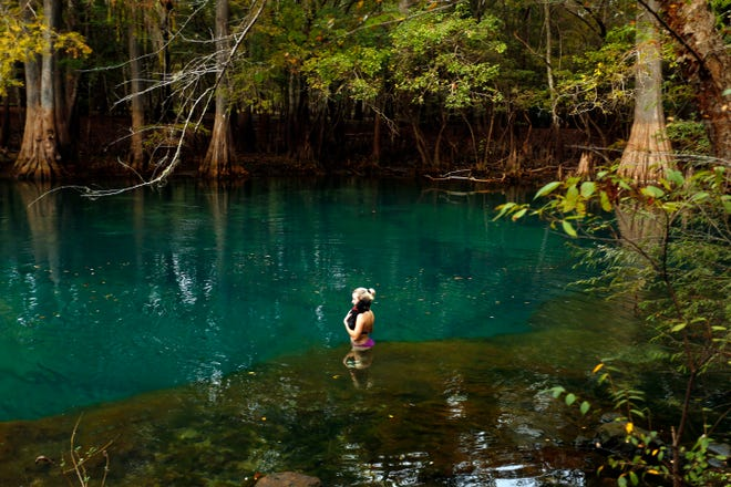 Elise Atkinson and her dog, Lafitte, take a dip in the water at Manatee Springs State Park in Chiefland, Fla., Wednesday, November 12, 2014. Erica Brough/Gainesville Sun