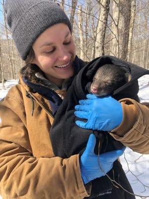 Emily Carrollo, Pennsylvania Game Commission wildlife biologist, holds a black bear cub.