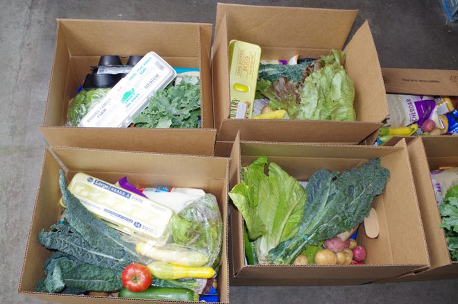Boxes of fresh food items await distribution at Mother Hubbard's cupboard.