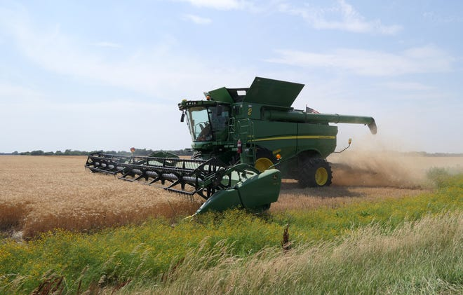 Eric Jacques harvests his and his brother's wheat on their Pretty Prairie field.