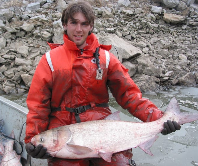 Chris Witte  of the USGS holds a large silver carp while investigating the invasive fish on the Missouri River.