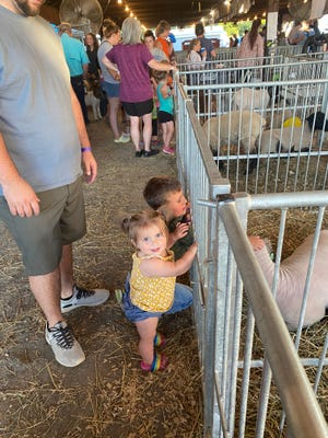 Bailey Rhodes and big brother Blazden enjoy the animals at the Mineral County Fair.