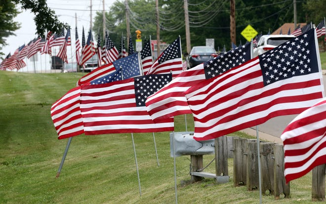 Several flags owned by Operation Flags of Freedom were taken from the public display along Faircrest Street SW in Canton Township.