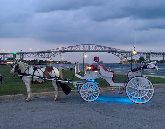 Majestic Heart Carriage Rides is offering rides along Thomas Edison Parkway in Port Huron this summer.