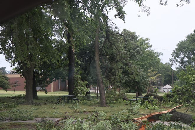 A storm passed through Newton June 25 and 26, leaving downed tree limbs and damage in its wake.