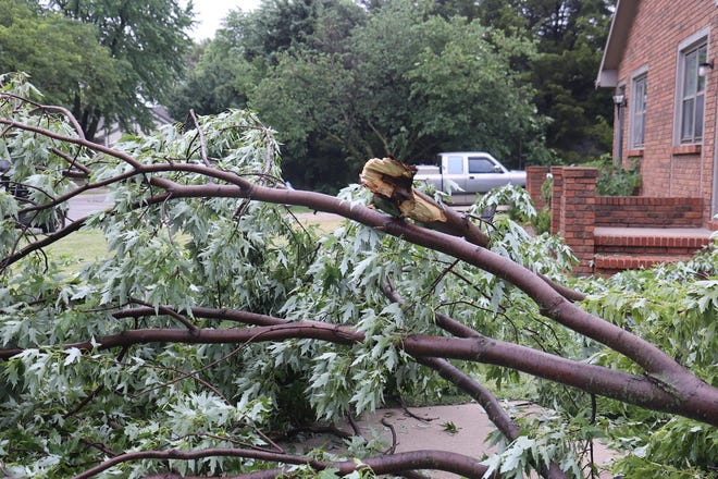 A storm passed through Newton June 25 and 26, leaving downed tree limbs and damage in its wake. The city announced the completion of tree limb cleanup Tuesday.