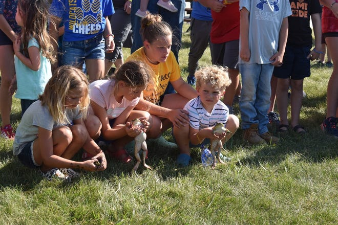 Family night activities at the Henry County Fair on Wednesday, June 23, included a frog race. These children crouch behind a rope line while waiting to release their frogs, in hopes the amphibians will hop straight to another rope line east of the merchants building on the fairgrounds in Cambridge.