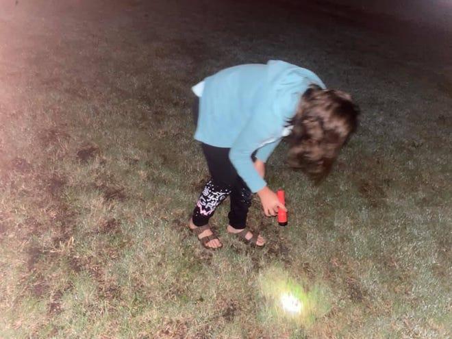 Kambree Strong uses a flashlight to locate nightcrawlers recently at Pratt's Lemon Park.