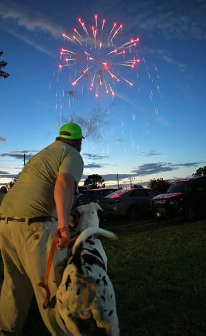 """""""George,"""" the 3-year-old mascot, of BIGDOG Snowcones is not too sure what to think about the fireworks at the """"Red, White & BOOM!"""" on June 26 at the Sylvania Amphitheater. George barks at the fireworks, but the Great Dane also wags his sizable tail. Holding George's lease, Ivey Miller from the Statesboro business that brought its food truck to the chamber of commerce event said the big dog had never been around any fireworks."""