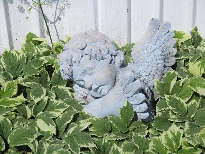 An angel asleep in the garden.