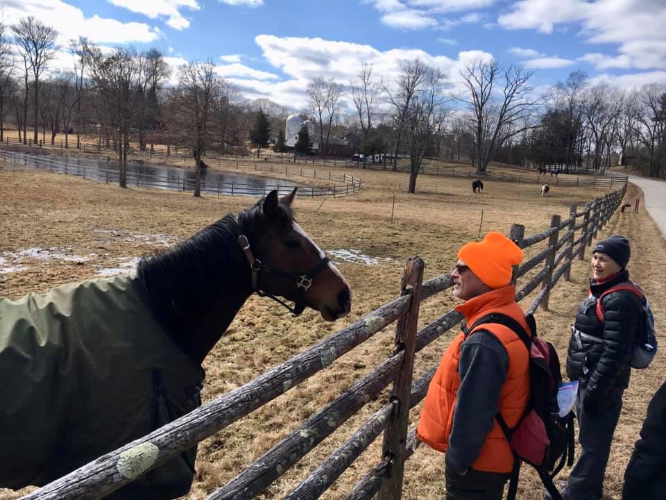 Visiting at Course Brook Horse Farm.