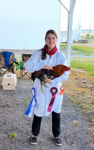 Yates County 4-H alum Laura Bagley with one of her prize-winning chickens, just one of the many species she worked with and showed in her years with 4-H.
