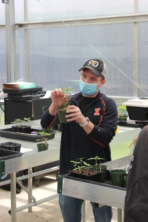 University of Illinois Extension commercial agriculture educator Phillip Alberti shows local students how to clone a young hemp plant.