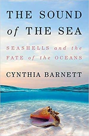 """The Sound of the Sea"" by Cynthia Barnett"
