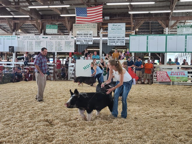 Taylor Farrer, left, judges the swine show at the Monroe County Fair on Monday, June 28, 2021.