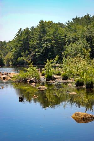FREE HORROR 431125e0-a466-49fe-85aa-a16cbf5ba0f6-0629_fr_dm_bioreserve_11 Fall River Bioreserve's true story