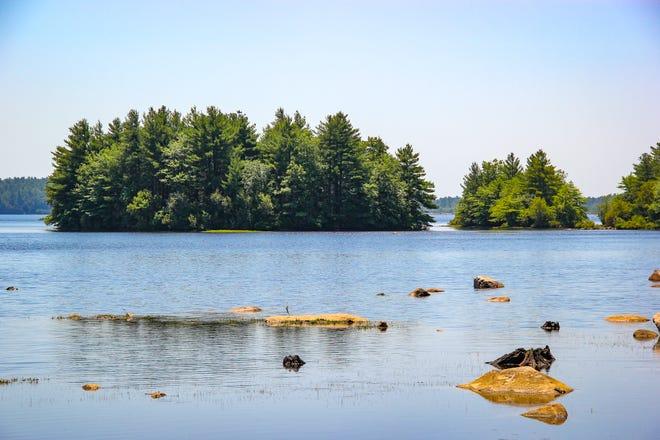 FREE HORROR f0b13514-cd40-48b9-bc46-736a9cf59a42-0629_fr_dm_bioreserve_10 Fall River Bioreserve's true story