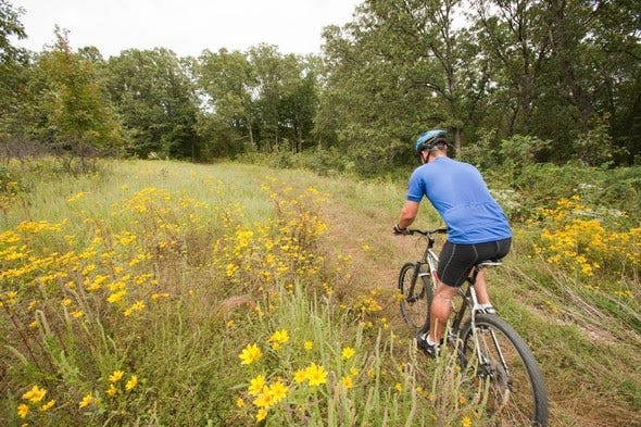 Mountain biking trails on MDC, partner areas provide excellent opportunities to discover nature in Missouri this summer.