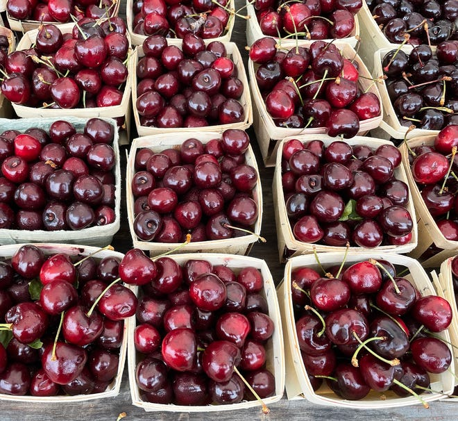 Cherries – Michigan's summer jewels – are in at the market.