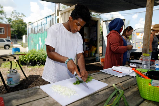 Tashaun McGowan cuts up fresh cilantro at Highland Youth Garden's Green Teens program on June 29. This is the third year for the program.