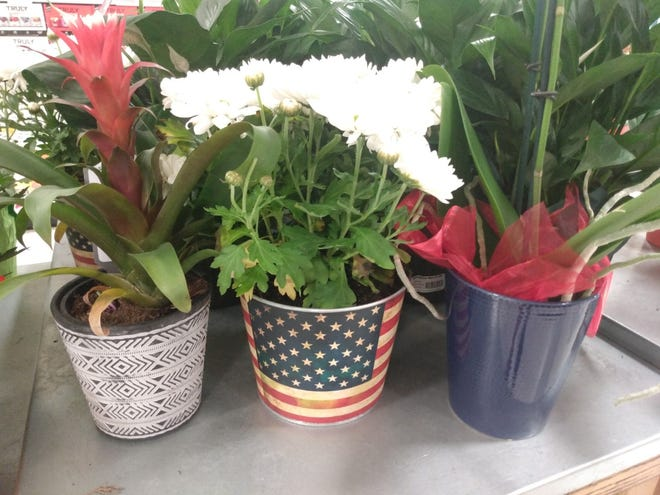 For a personal patriotic touch, DIY projects include painted buckets, pallets and mason jars in red, white and blue. Incorporate small USA flags, ribbons or focus on a stars or stripes theme.